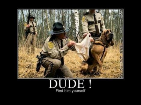 Caută-l tu!