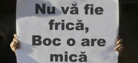 slogan haios